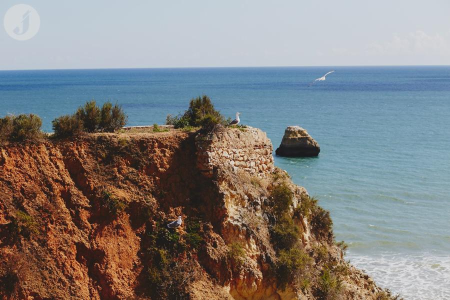 Portugalia blog (54 of 82)